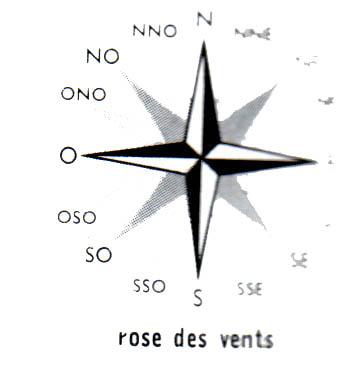 rose4.gif