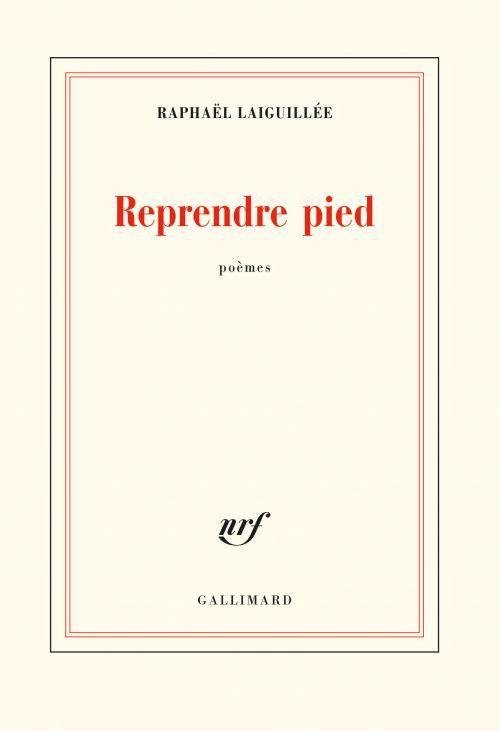 Reprendre pied de Raphaël Laiguillée